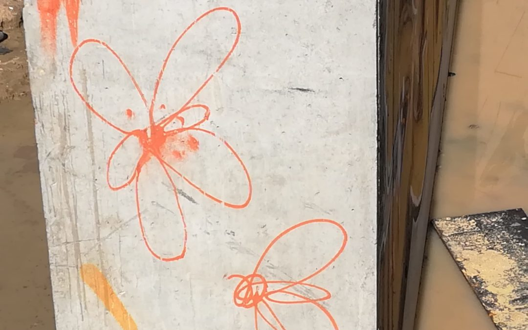 Abejas y mariposas